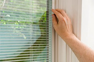 Http Npcservices Ca Windows And Doors Between The Blinds